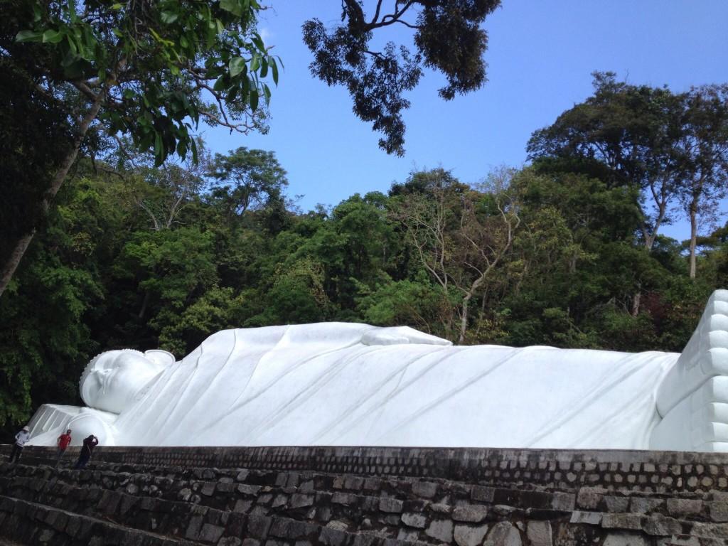 Budda Gora Taku